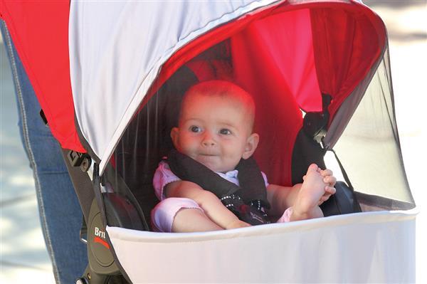 коляска с защитной сеткой