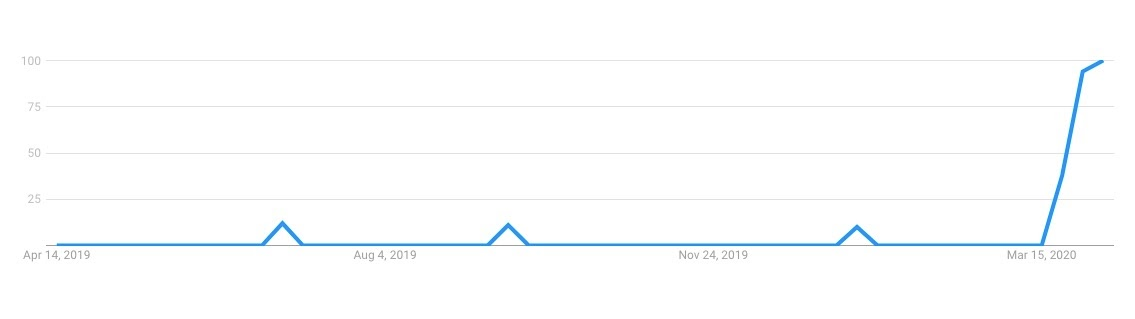 """""""how to look good on zoom"""" search trend in COVID-19 times"""