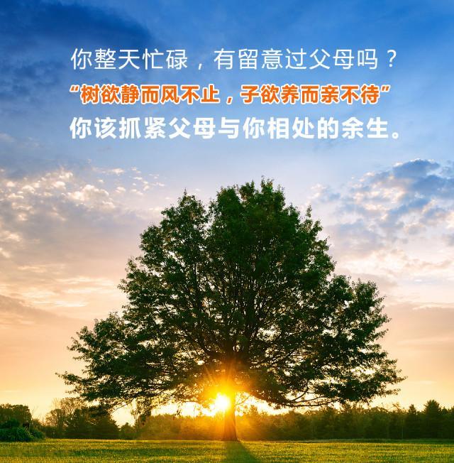 C:UserszzhelDocumentsWeChat Fileshelenzeng2016FileStorageTemp16a4b509ac7ee94db502324b7f286267.jpg