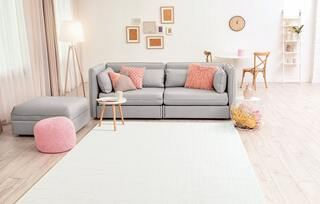 Always clean area rug by following cleaning guidelines