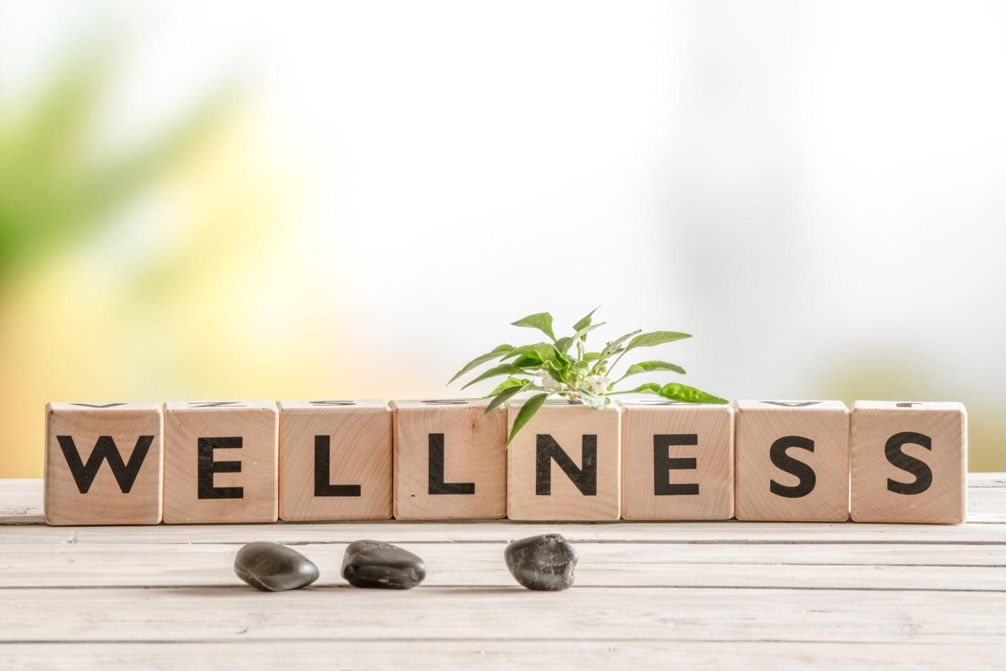 7 Incredible Benefits of Life and Wellness Coaching Western Pennsylvania Healthcare News