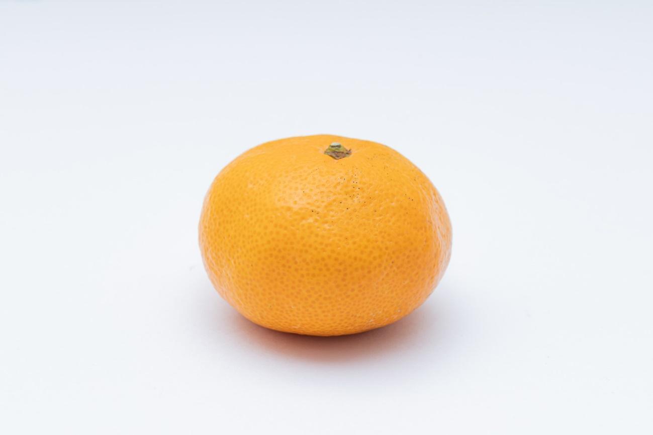 オレンジとレモン  自動的に生成された説明