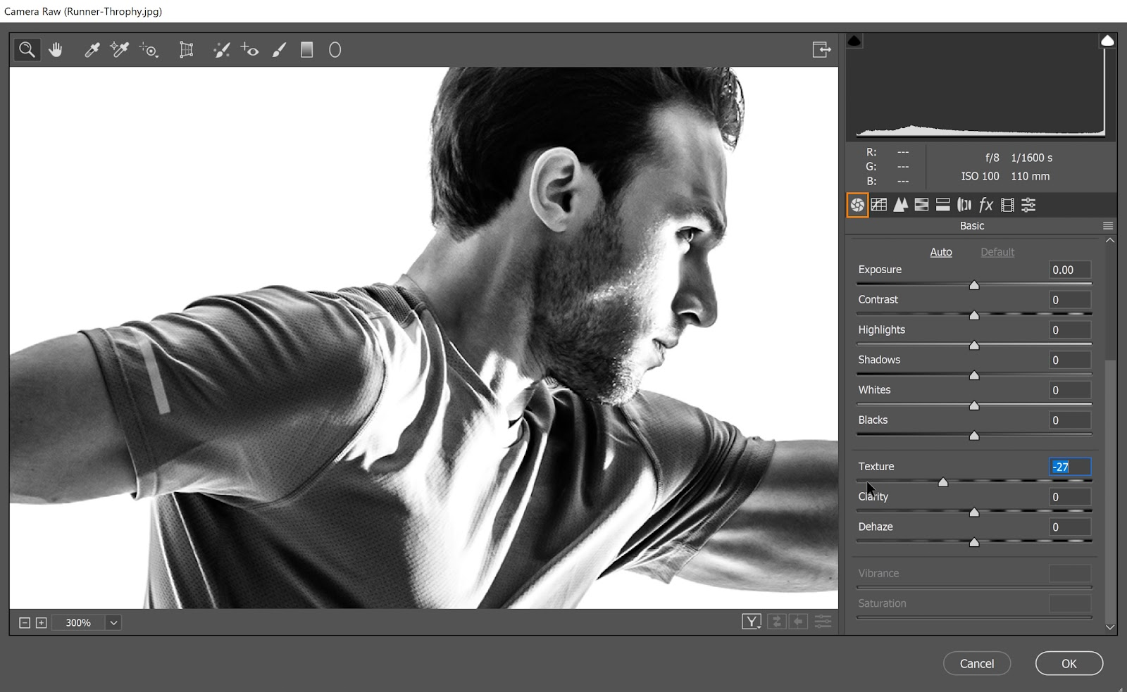 On the Basic tab, reduce the texture by bringing the slider all the way down to smoothen the textures of the image