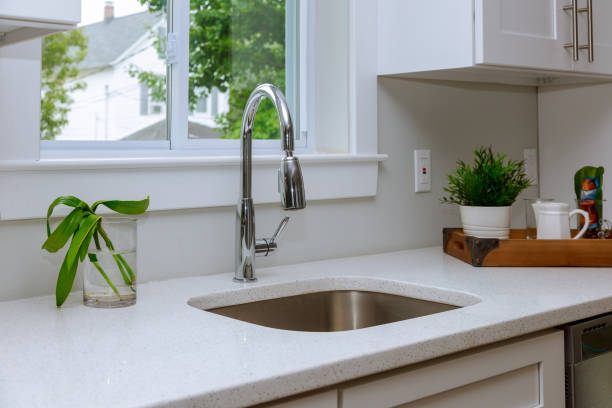 Kitchen organization: cleaning the sink