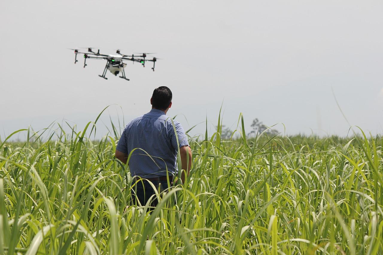 Drones na lavoura