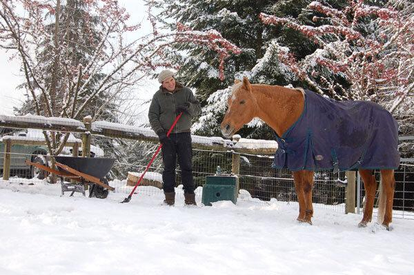 Online Workshop: Preparing Your Horse Property for Winter — Horses for  Clean Water