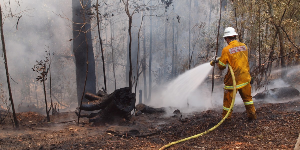 firefighter hoses down a wildfire in the Blue Mountains, Australia in 2013