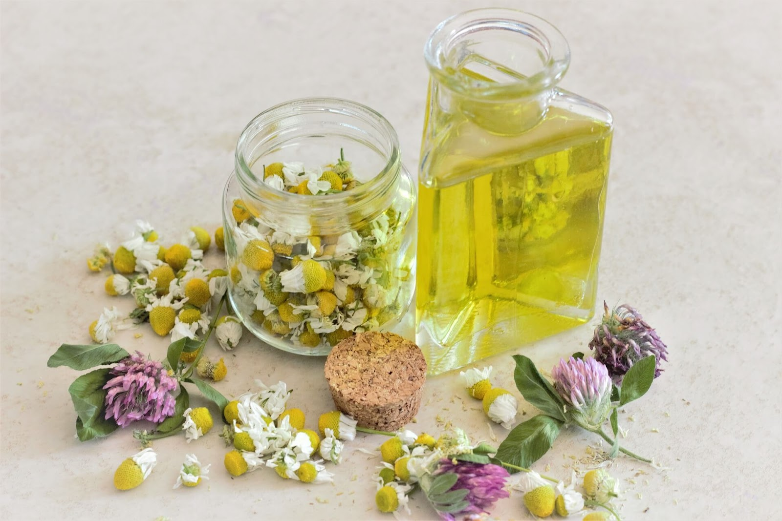 Chamomile extract oil Essential Oils