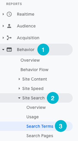 find site search terms in google analytics