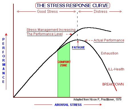 stress response.jpg
