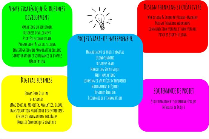 Programme du Mastère Entrepreneuriat Digital