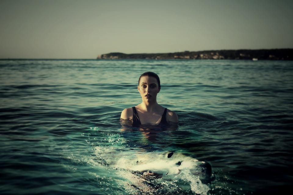 Kvinna, Havet, Hai, Haj, Fisk, Djur, Simma, Vatten