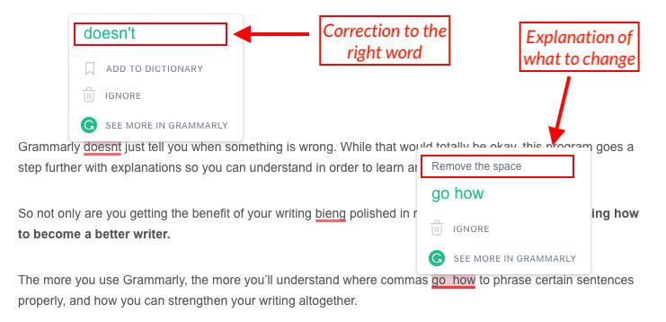 grammarly example