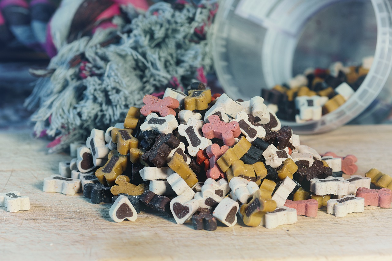 Dog food storage mistakes you need to avoid