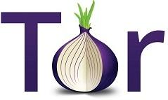 TorLogo-v2-onion1