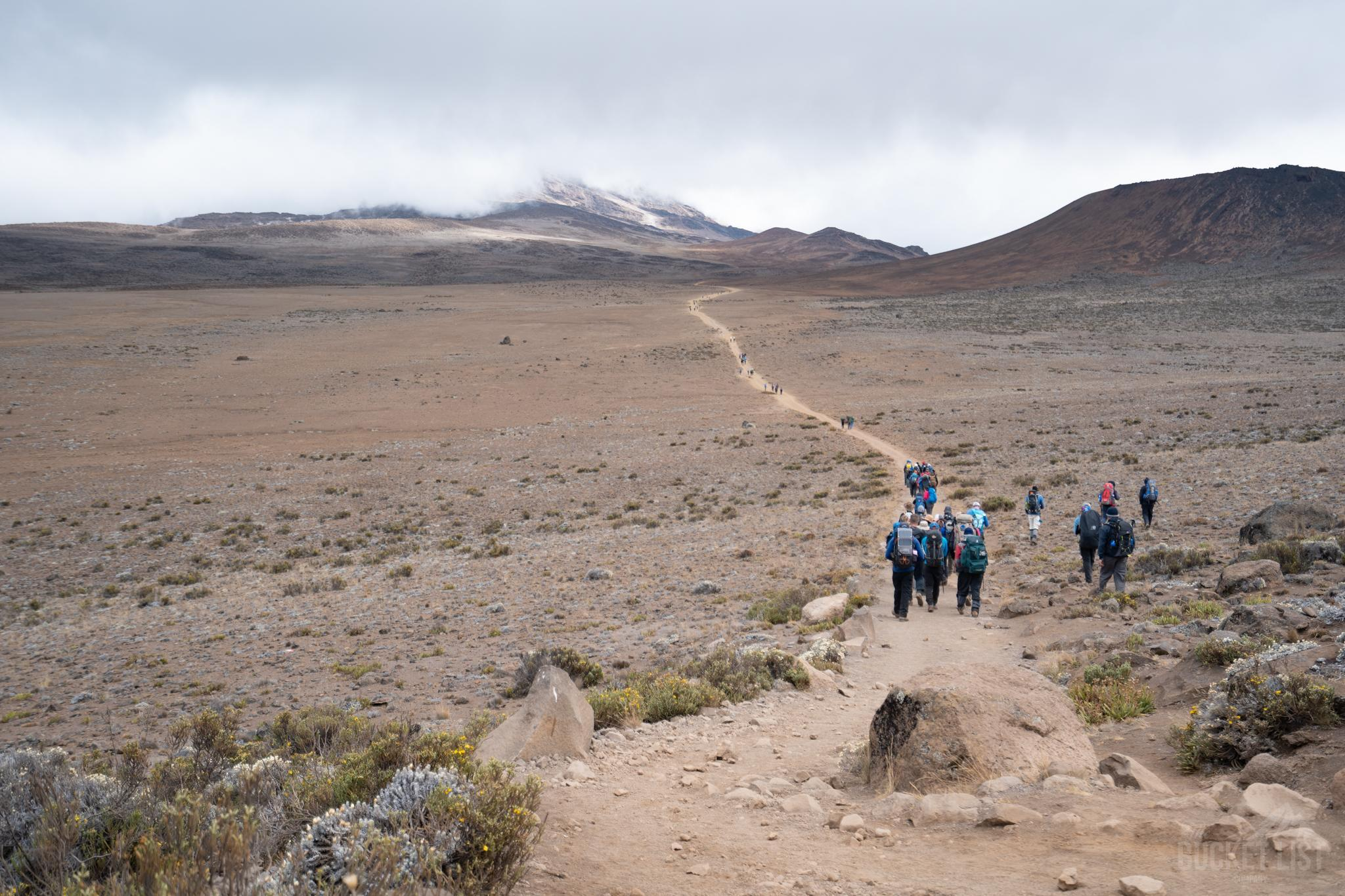 A group trekking towards Kilimanjaro