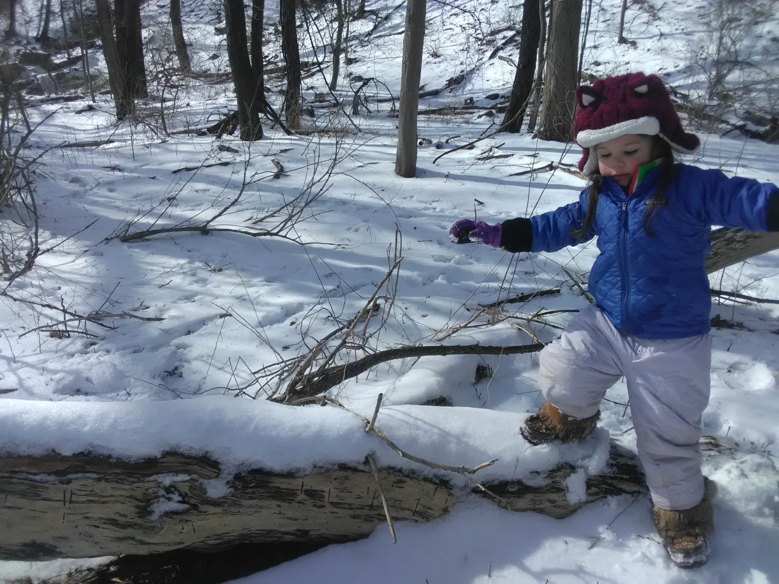 Small child stepping onto a snow covered log.