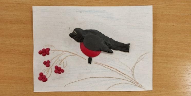 F:\Птицы\фото в группе\10.jpg