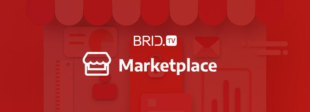 brid.tv video ad network logo