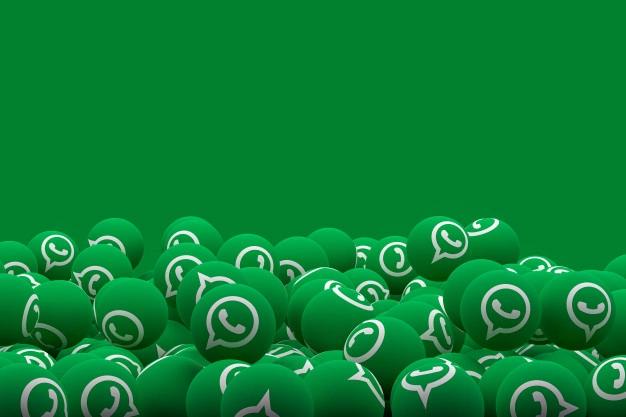 Fitur Chat Panel WhatsApp