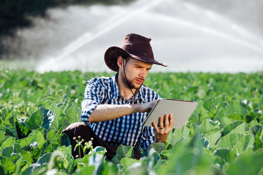 Tecnologia pode elevar produtividade no campo e reduzir o imposto a ser pago pelos produtores rurais. (Fonte: Shutterstock)