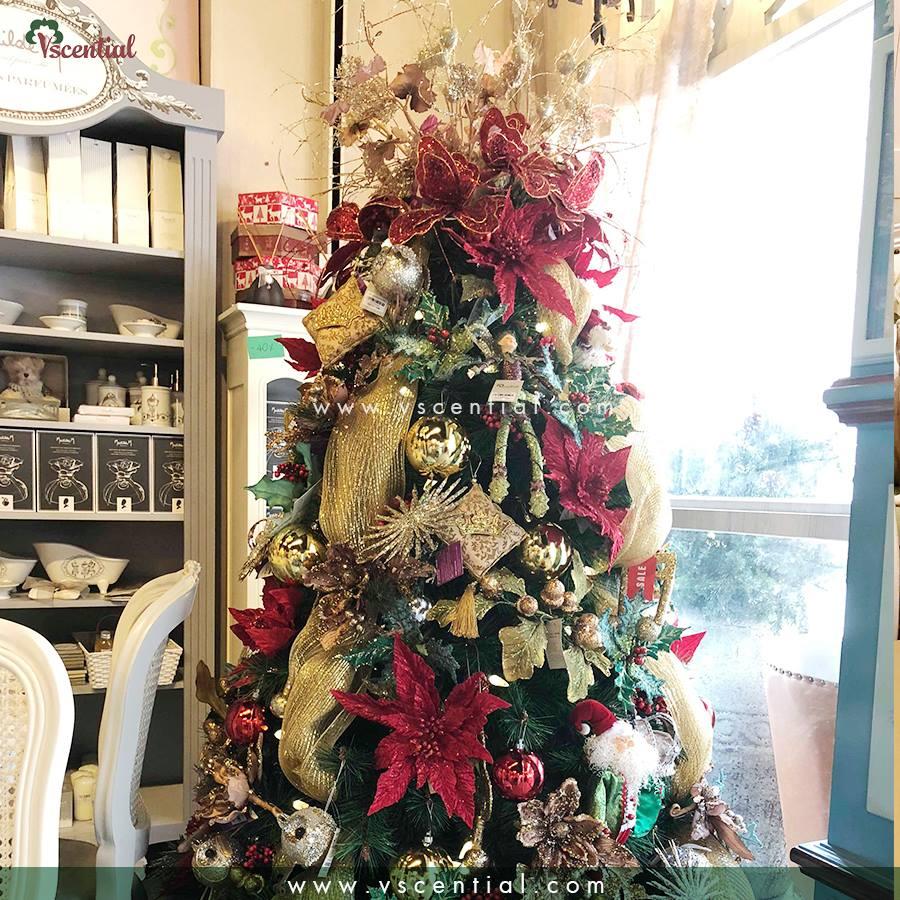10 Sự thật về Giáng sinh và ông già Noel