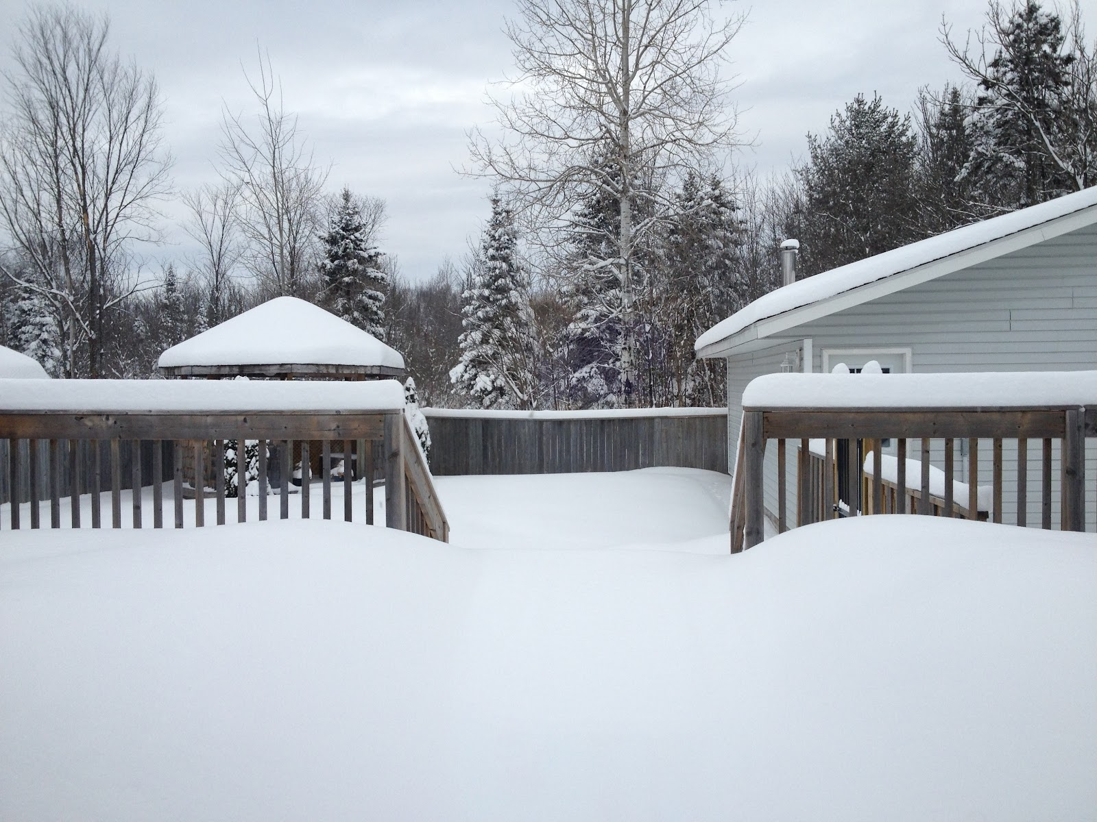 View of snow covered deck, backyard and trees.