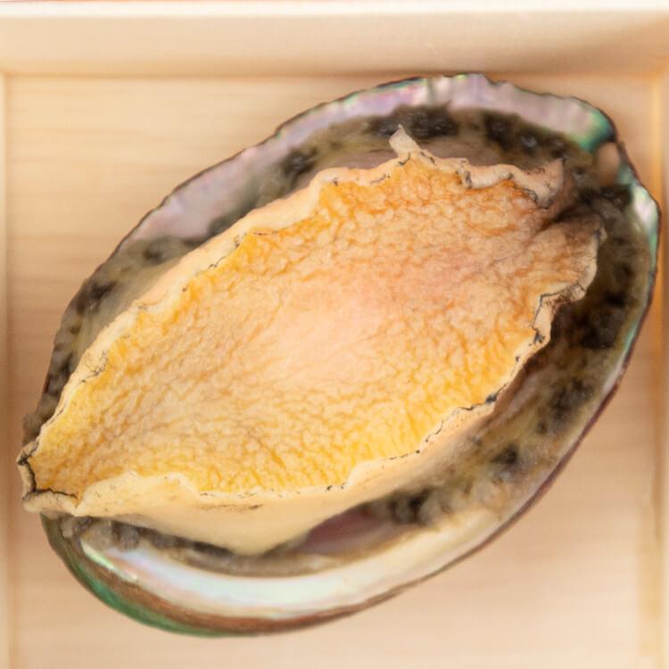 【鮮鮑魚 × 1 顆】鮑魚肉質厚實彈牙味又鮮,以海味提鮮往往少不了它。許多人會整顆鮑魚直接吃,但其實會建議先切片,較能細細品味鮑魚的口感。⚠️小提醒:一般料理請將鮑魚肉取下進行料理,其餘臟器丟棄,因大部分人較不喜歡臟器過於濃郁的味道。
