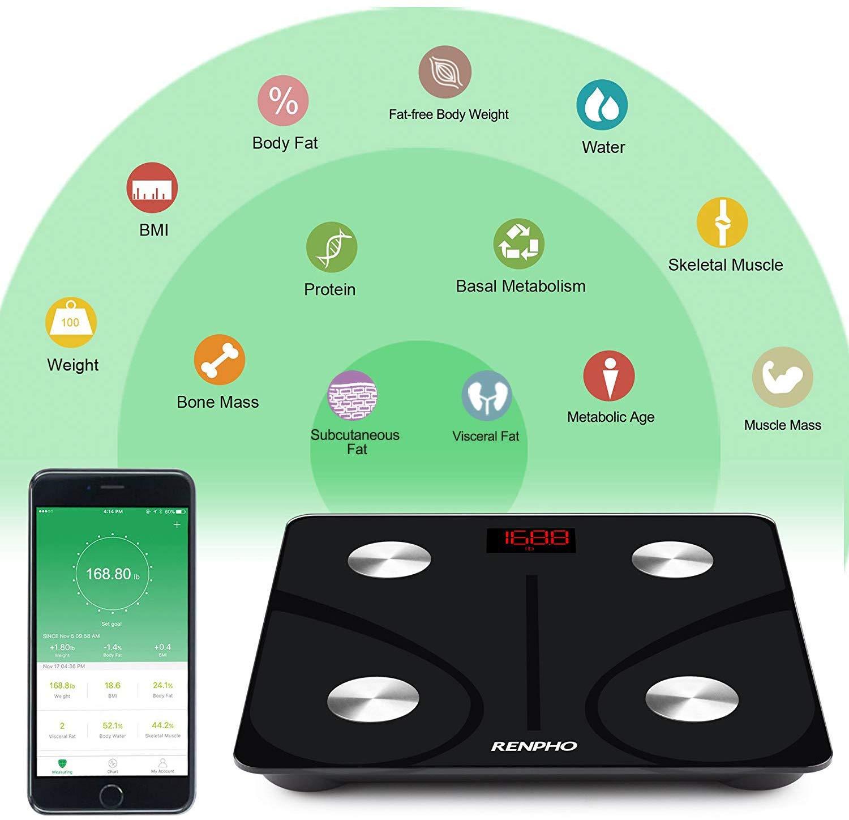 Renpho mobile app.