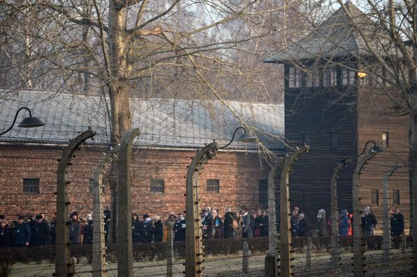 «Молотов, Риббентроп, просыпайтесь! Путин сошел с ума!» Зигмунт Дзеньчоловский к годовщине освобождения Освенцима