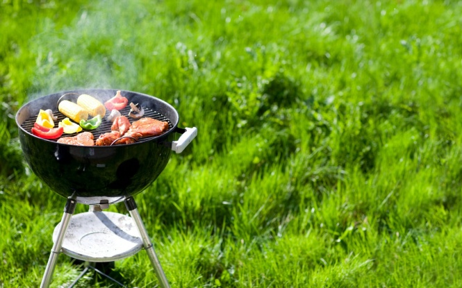 fon-zelenaya-trava-piknik.jpg