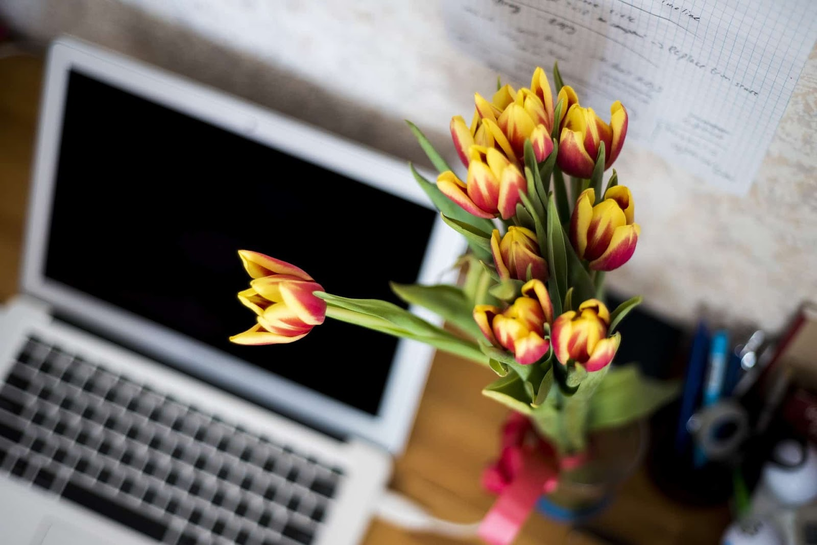 Laptop and Tulips