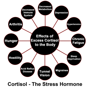 Tunnel Vision, Migraines, Sleep Deprivation, Acid Reflux Disease, Hostility, Hunger, Arthritis, Decreased Immune System, Decreased Metabolism, Depression, Hypertension, Chronic Fatigue - the effects of high cortisol levels.