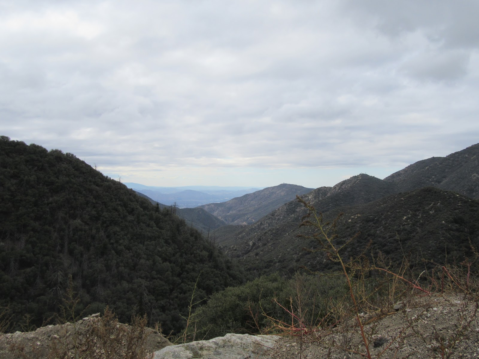 View down San Bernardino Forest climbing Hwy 38 to Onyx Summit by bike.