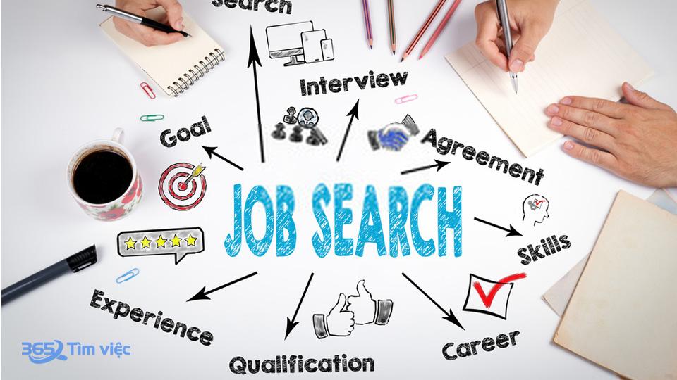 Timviec365.vn - website hoạt động ở lĩnh vực tuyển dụng việc làm