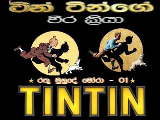 TIN TIN (15)