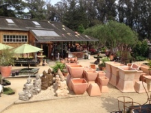 Superior Cottage Gardens Is Located At The Top Of A Hill Right Off Of North Petaluma  Boulevard. Their Grounds Are Decorated With Gorgeous California Poppies, ...