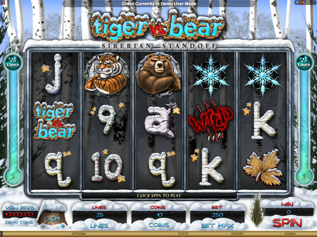 Tiger vs Bear Slots Game Review