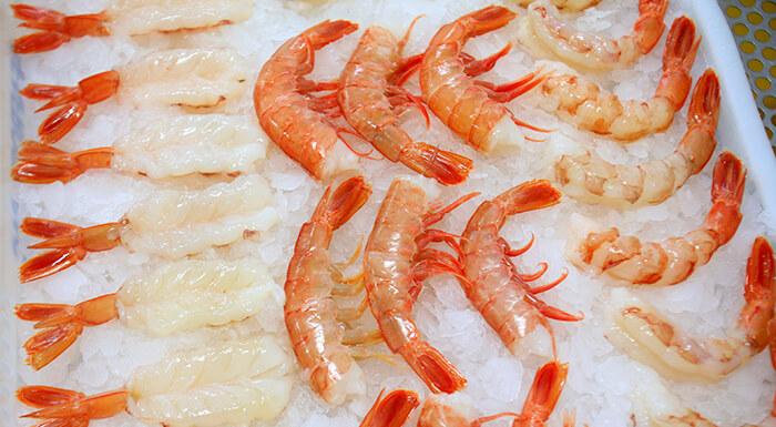 看那雪白晶透的蝦肉,配上柑紅的外表,真是讓人口水流不停。因為肉質又甜又嫩,所以部分日本料理店也會選擇用天使紅蝦作為刺身食材。
