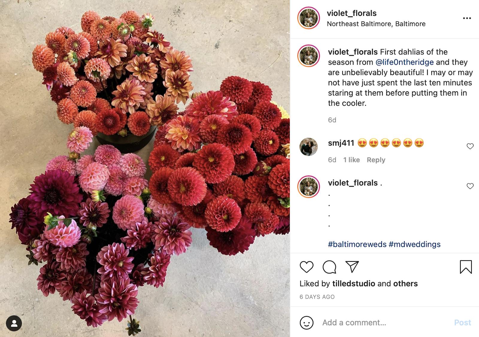 dahlias for seasonal wedding flowers- wedding flowers cost