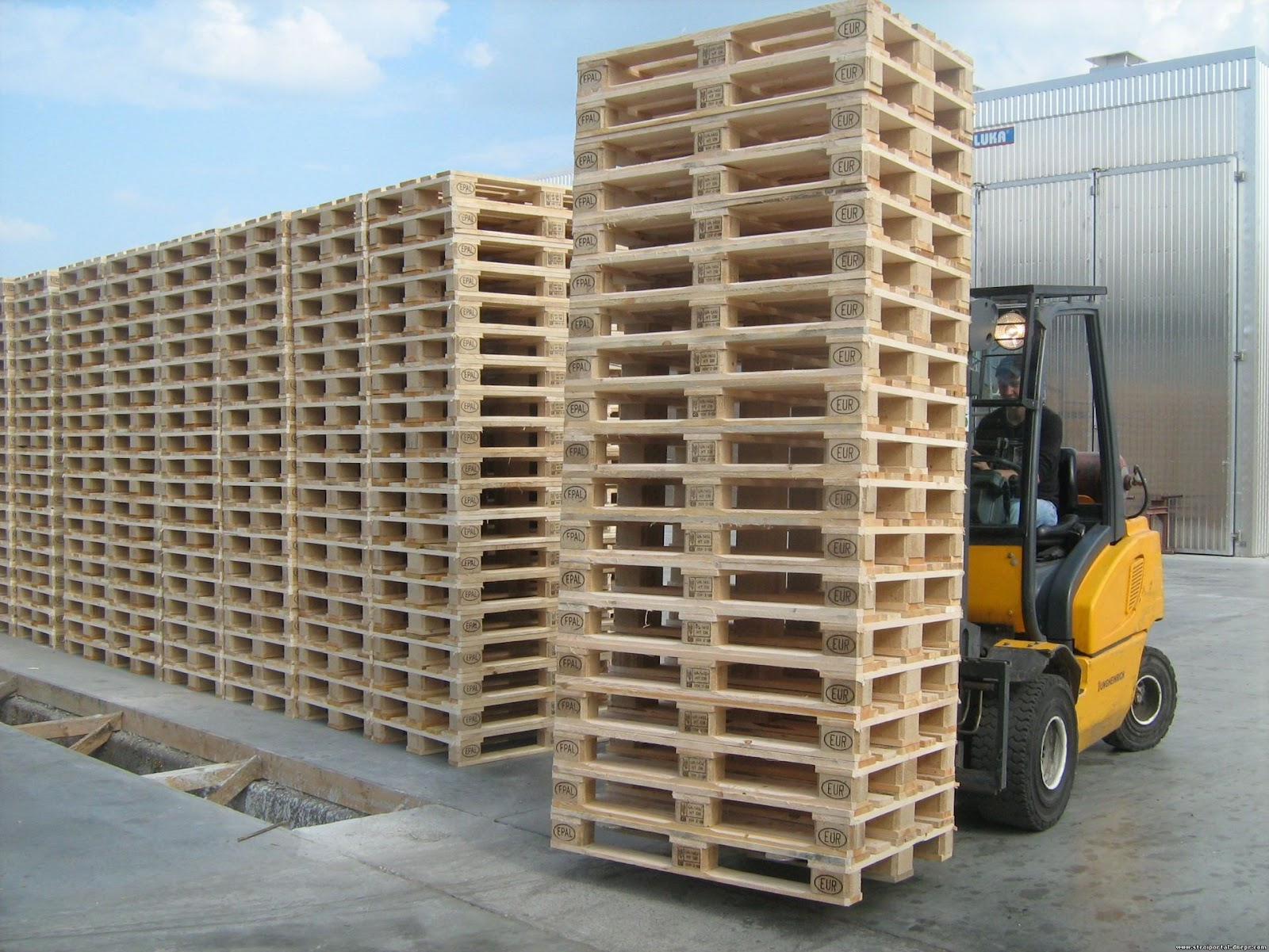 SeaRates Blog: How to Effectively Use Pallets When Loading