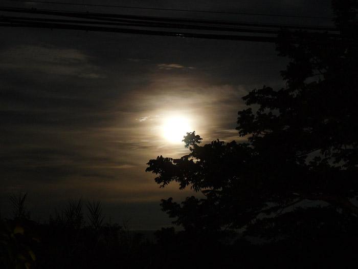 night-scene-f0nt_com.jpg