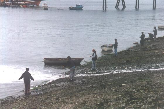 940462-Locals_fishing_by_the_beach-Isla_Chiloe.jpg