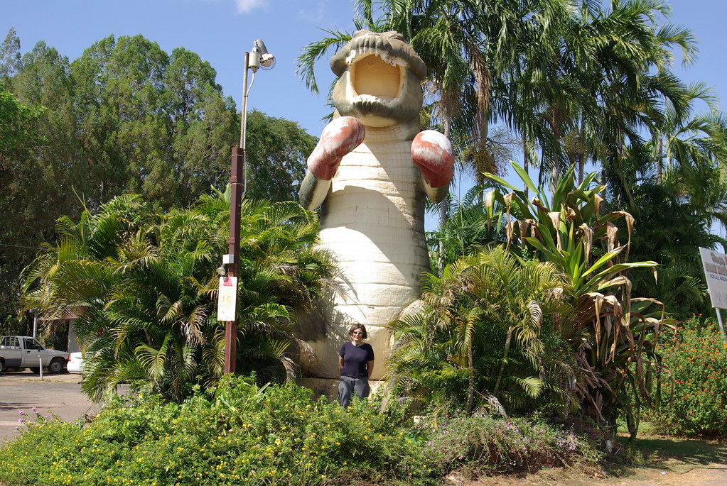 the big boxing crocodile standing 13 metres tall wearing boxing gloves