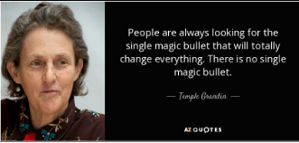 quote by temple - people are always looking for the magic bullet that will totally change everything. There is no single magic bullet.