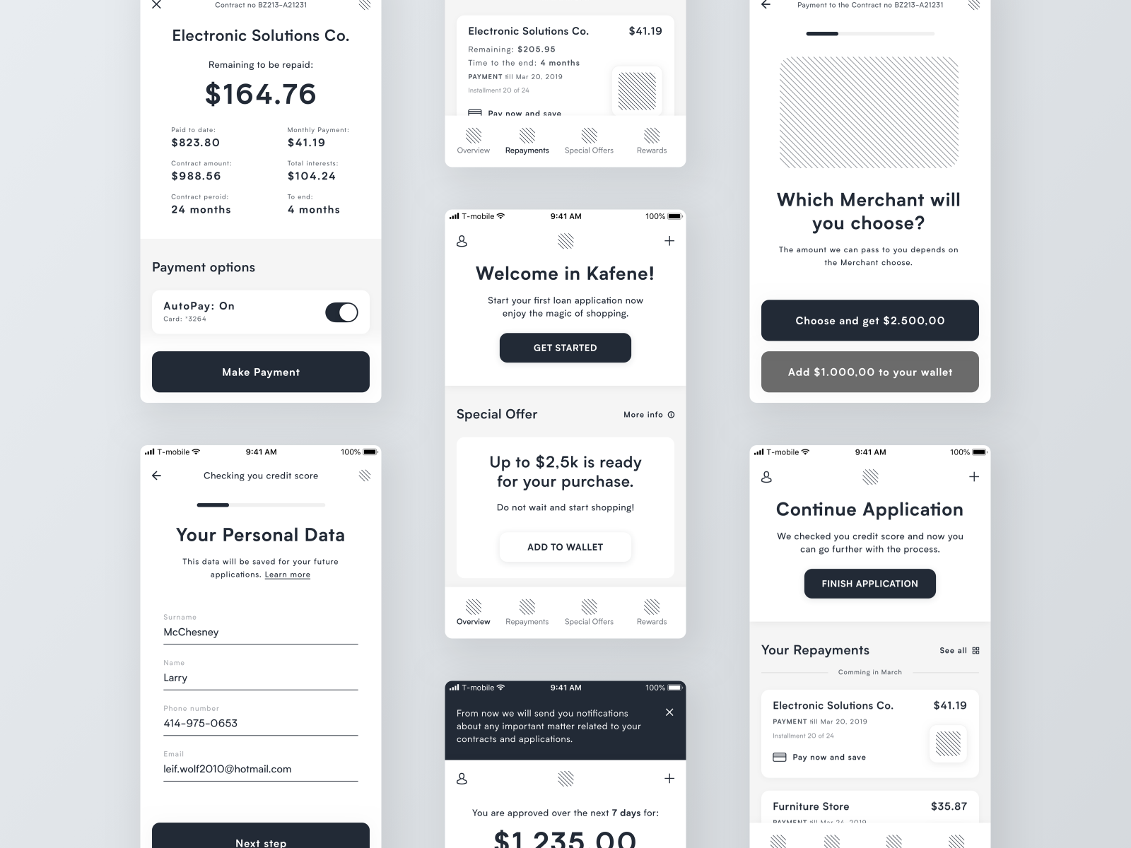 A medium fidelity wireframe example of screens in Ryszard Cz's financial loan app.