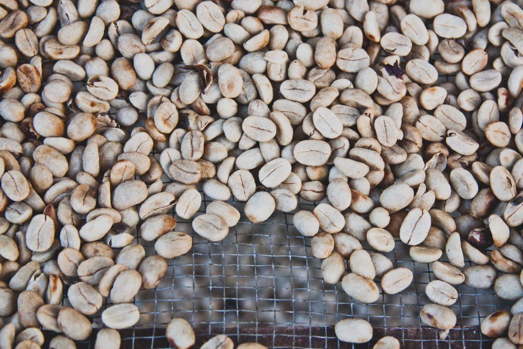 巴西咖啡 咖啡生豆 Photo by angela pham on Unsplash