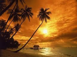 sunrisesd