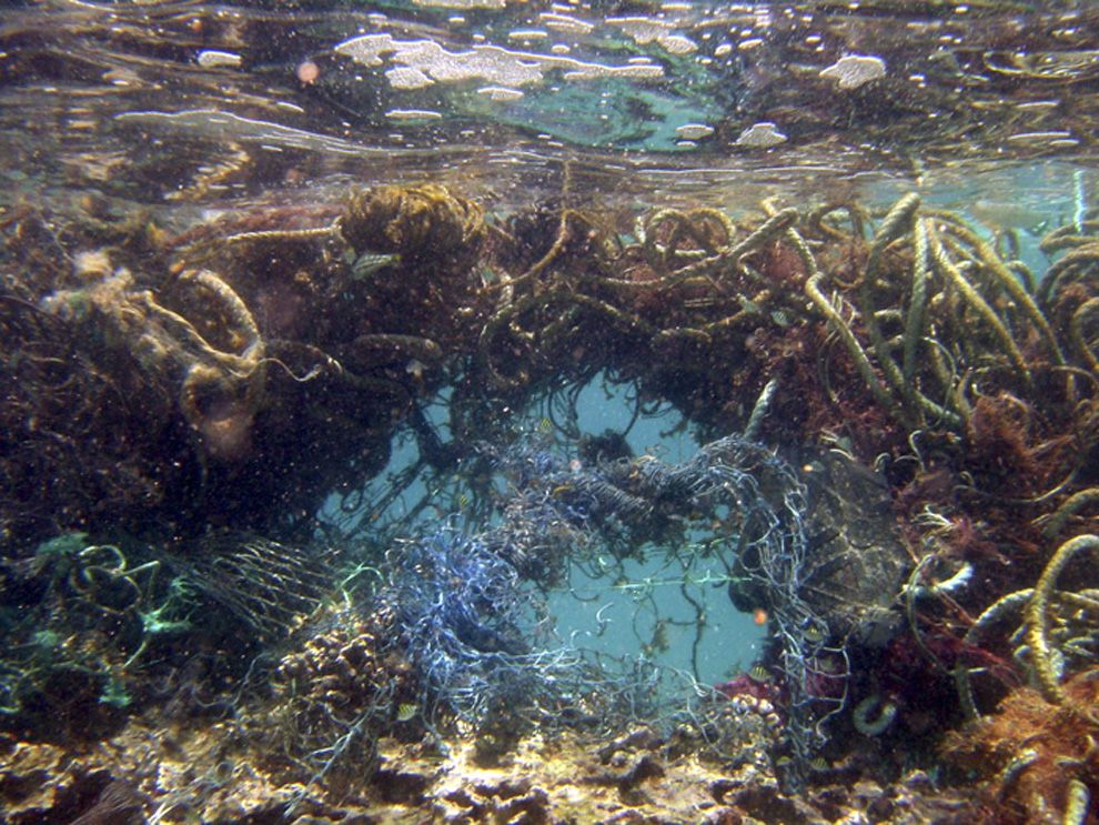 Photo of marine debris in North Pacific Ocean full of fishing net and rope