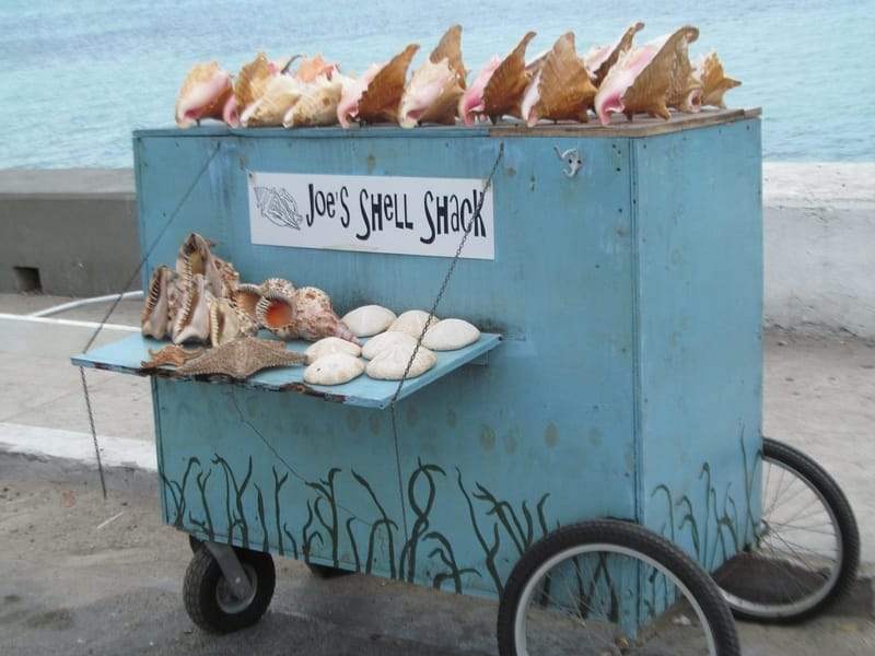 Small vendor cart saying Joe's shell shack
